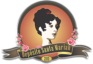 logo_santamariah_decorviva-1